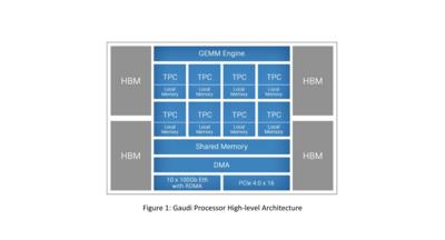 Intel Habana Gaudi HL-025