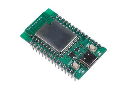 Wio mini Dev Board