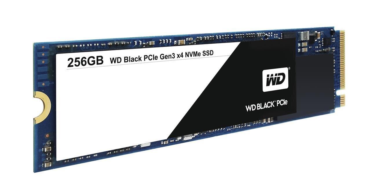WD Black : des SSD M.2 et NVMe à 2 Go/s, dès 0,42 euro par Go